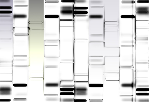 Early Experiments in Treating Muscular Dystrophy With iPSC-based Gene Therapy Shows Promise