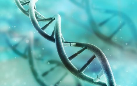 Problems in RNA Processing Seen to Lead to Congenital Myotonic Dystrophy in Early Study