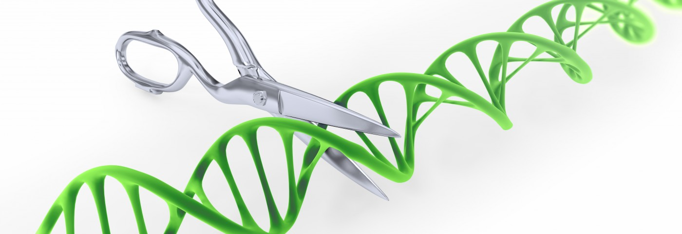 Duchenne MD Therapy by Gene Editing of Stem Cells May Be Possible in Next Decade