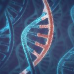 MD gene variations and apabetalone