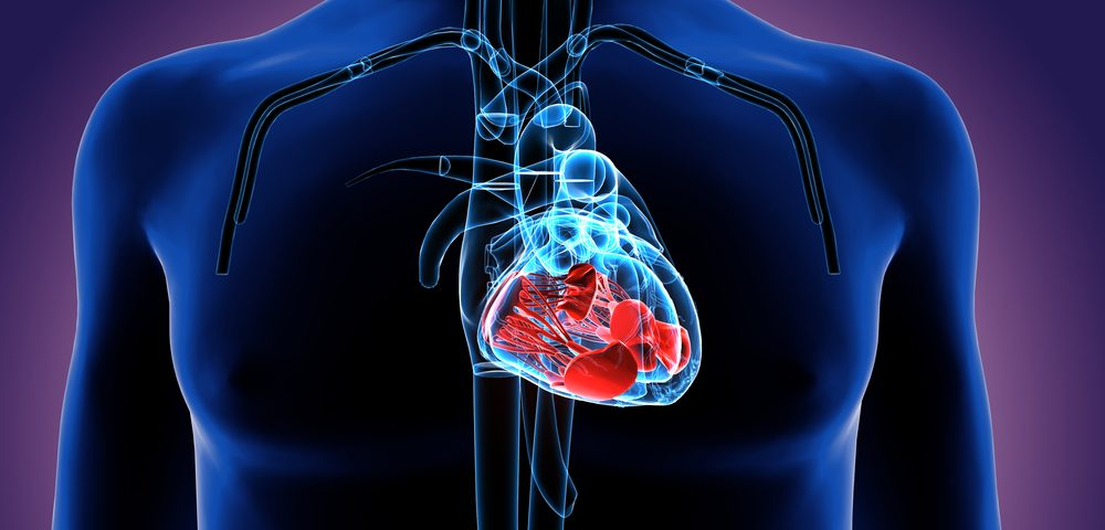 Heart Drug Inspra Improves Cardiac Function in Young Boys with DMD, Study Shows