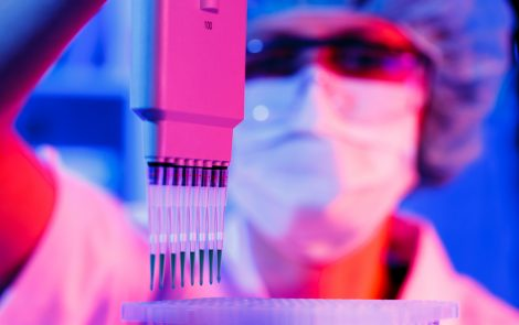 Genetic 'Checkpoint' Model Could Lead to New Therapies for DMD, Research Suggests
